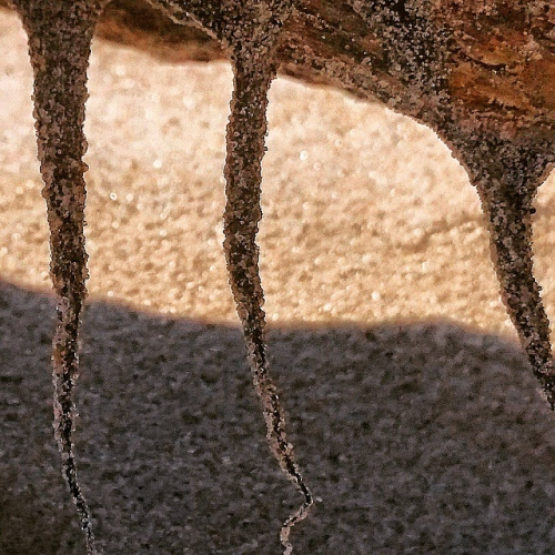 Sand shapes in the sun